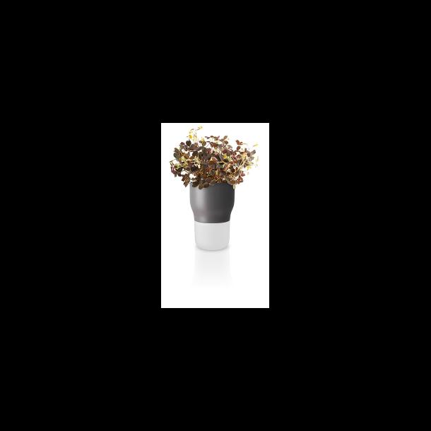 Eva Solo Selvvandende urtepotte - Nordic grey 9 cm
