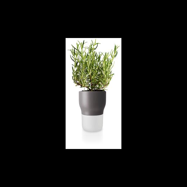 Eva Solo Watering herb pot - Nordic gray 13 cm