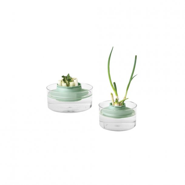 Brabantia Herb Regrow Kit- Jade Green